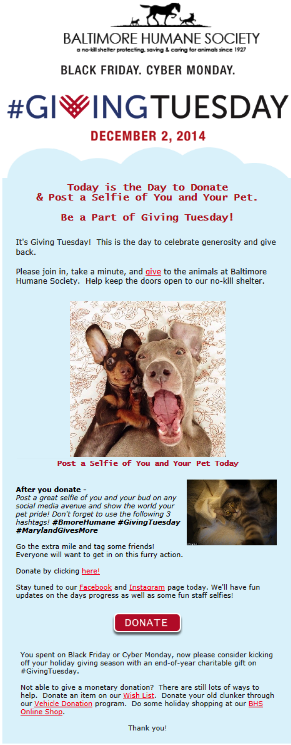 holiday email marketing for giving tuesday