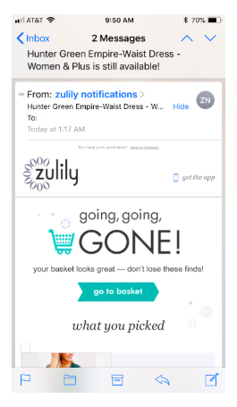An example of engaging email marketing from Zulilly.