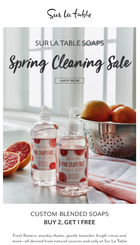 Spring Cleaning Email Example